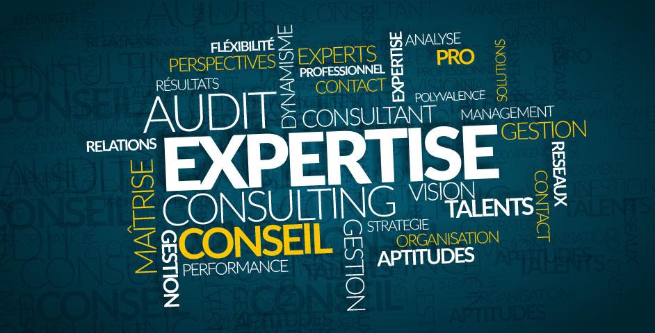 CHA Expertise et Conseil